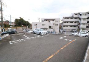 shimazakinaika_photo05